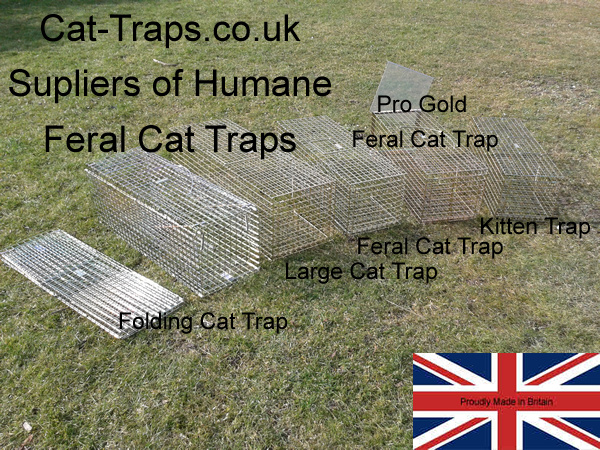 cat-traps.co.uk