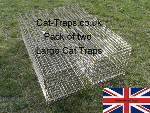 two large cat traps